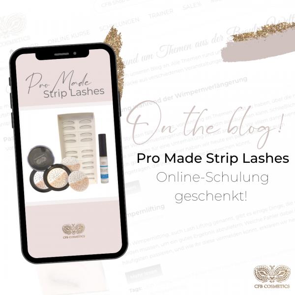 Insta-CFB-On-the-blog-Pro-Made-Strip-Lashes-Online-Schulung-geschenkt